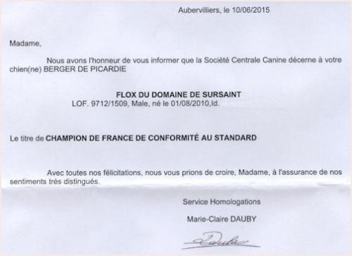 Homologation championnat 3'-500bb.jpg