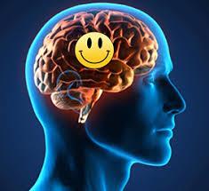 cerveau heureux.jpg