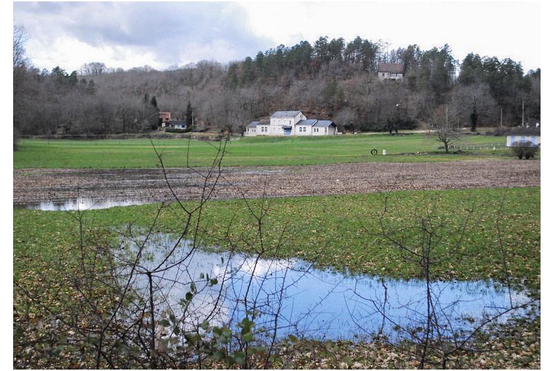 École La Marelle.png