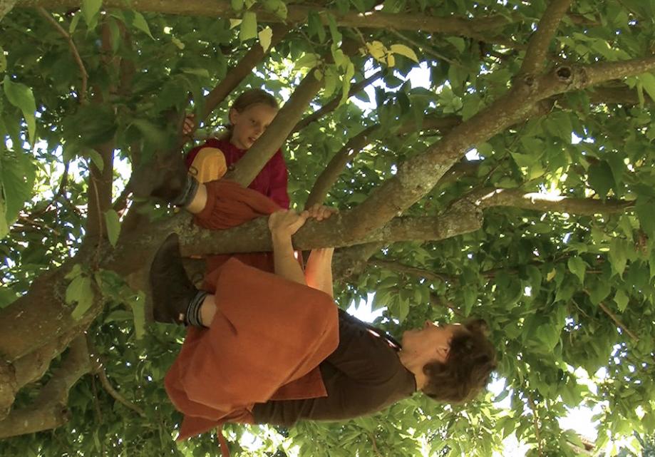 L'arbre de l'enfance.png