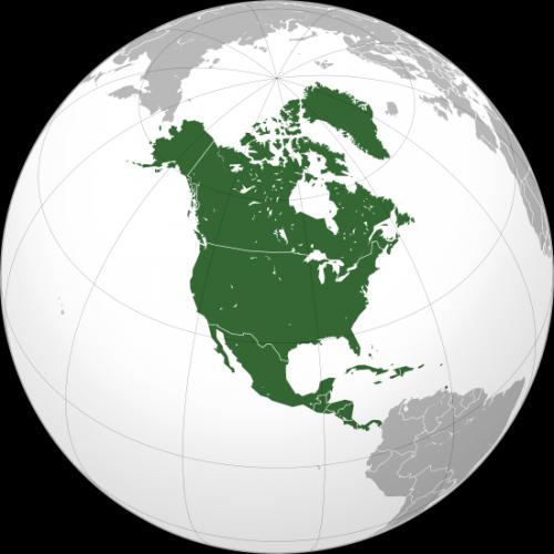 L'Amérique: le grand dragon rouge