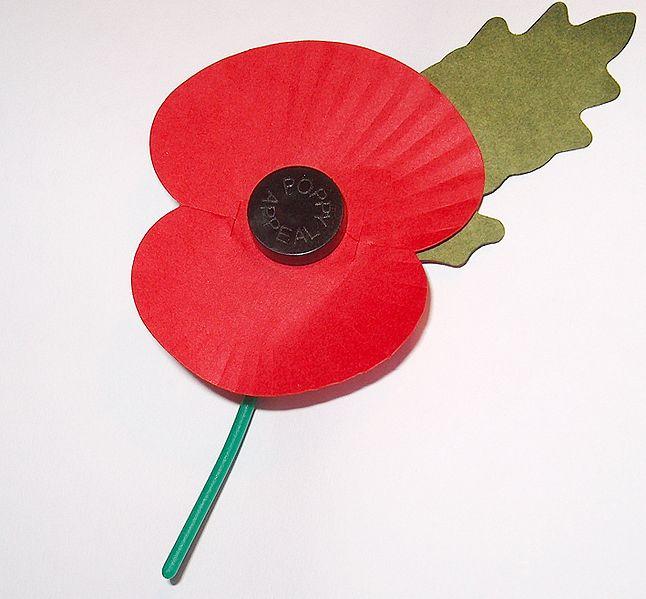 646px-Royal_British_Legion's_Paper_Poppy_-_white_background.jpg