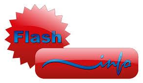 flasch info.jpg