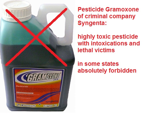 012-highly-toxic-pesticide-gramoxone-ENGL.jpg