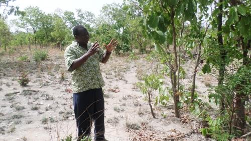 Pour le Pr Adjima Thiombiano de l'Université de Ouagadougou ce ranch occupe une place stratégique dans la conservation de la biodiversité..JPG