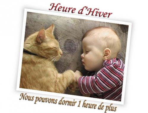 chat & bébé.jpg