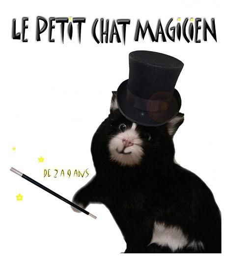 le-petit-chat-magicien.jpg