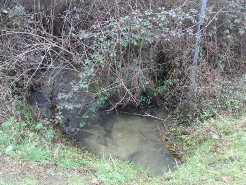 Le canal d'amenée du Neufond.jpg