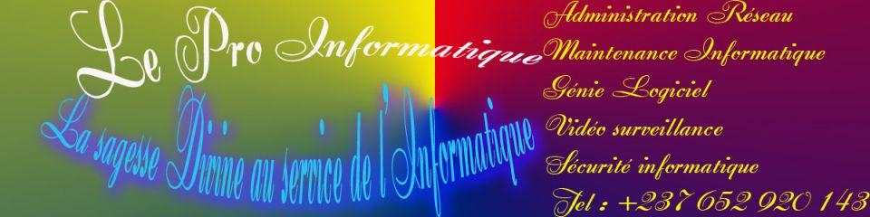 Le Pro Informatique