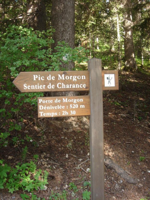 Le Grand Morgon 10 juin 2014 (2) - Copie.JPG