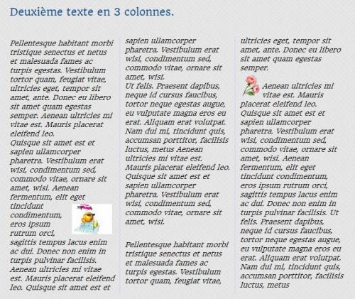 texte3colonnes.jpg