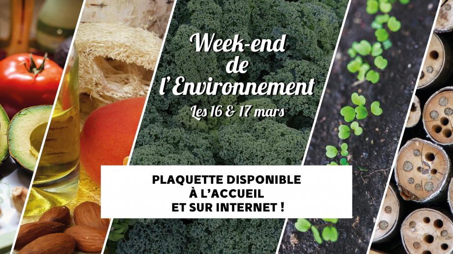 18-02-21_week-end_environnement_web.jpg