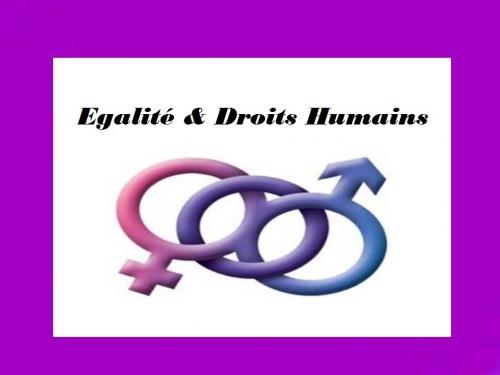 Egalité & Droits Humains.jpg