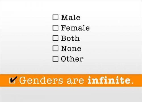 Les Genres sont Infinis / Genders are Infinite