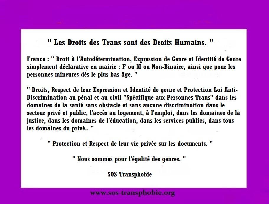 Stop l'égalité transphobie ! On veut des lois spécifiques pour les Trans en France