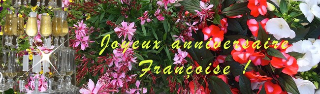 https://static.blog4ever.com/2012/07/706101/Jeuvac-197111anniversaireFranoise.jpg