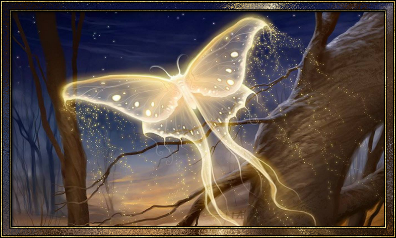 https://static.blog4ever.com/2012/07/706101/Papillon-de-lumi--re.png