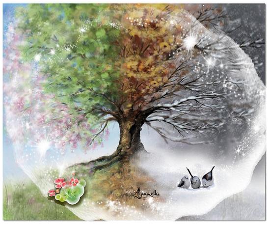 https://static.blog4ever.com/2012/07/706101/arbre-4-saisons.png