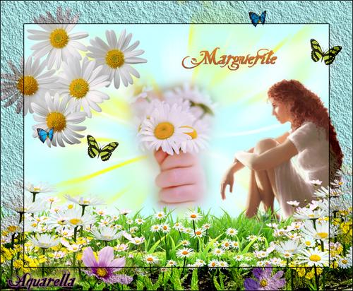 Marguerite.png