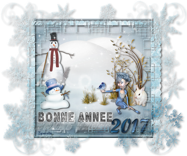 https://static.blog4ever.com/2012/07/706101/bonne-annee...png