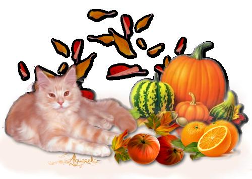 https://static.blog4ever.com/2012/07/706101/fruits-d--automnes-et-chat-roux.png