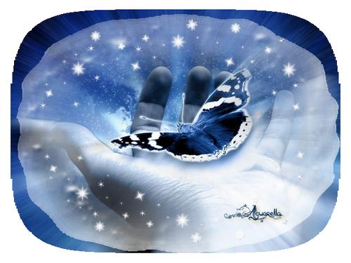 https://static.blog4ever.com/2012/07/706101/main-papillon---toil--e.png