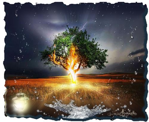 https://static.blog4ever.com/2012/07/706101/orage-et-arbre-foudroy--.png