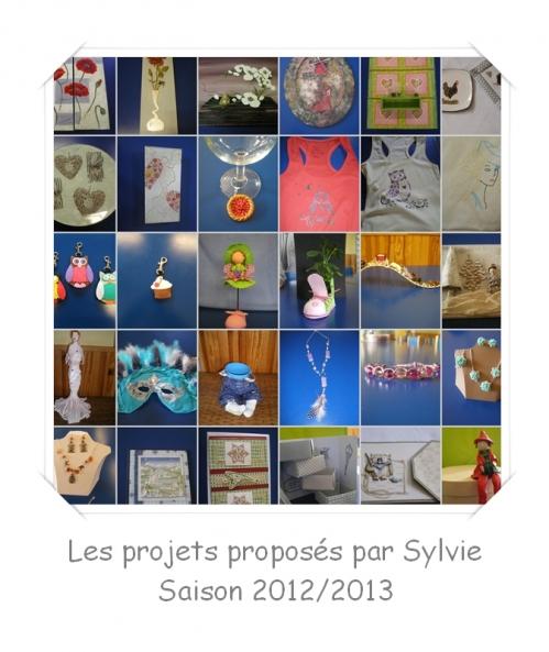 montage pour archives projets saison 2012-2013.jpg