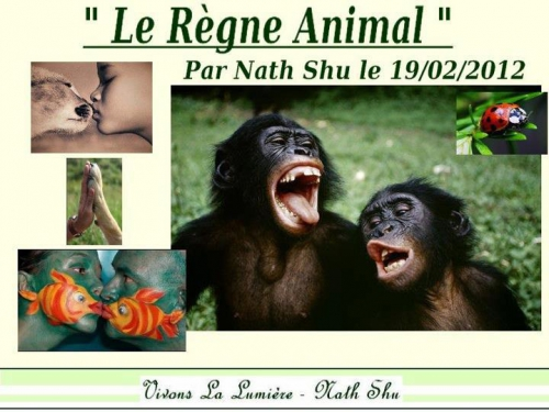 2012 le régne animal.jpg