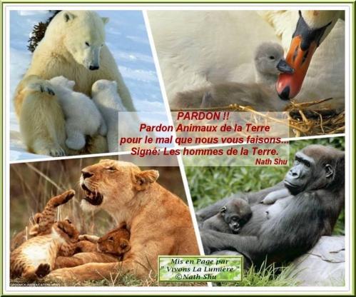 2012. 12 pardon.jpg