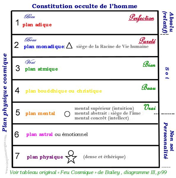 .9 constitution_occulte_de_lhomme_+_filigrane_modifi.jpg