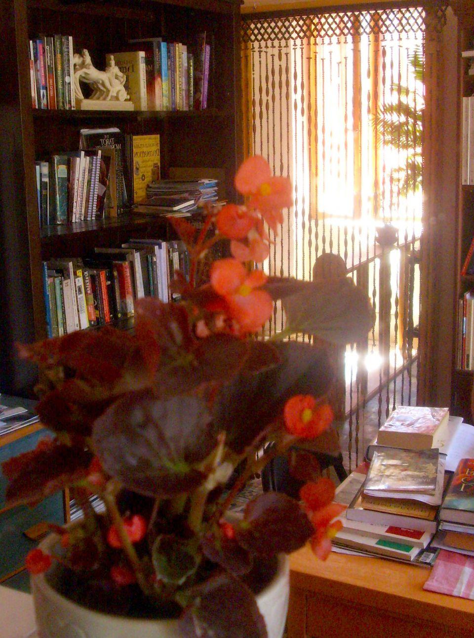Val Wineyard Publishing