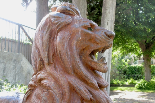 LionHead.JPG