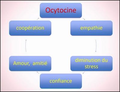 schema-ocytocine.jpg