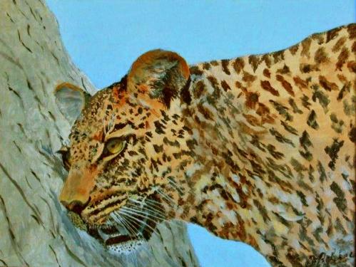 léopard.jpg