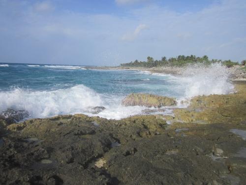 tulum-sur la plage (18).JPG