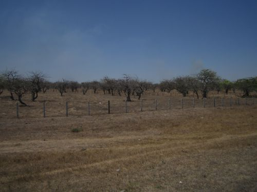 chichigalpa-somotillo 3