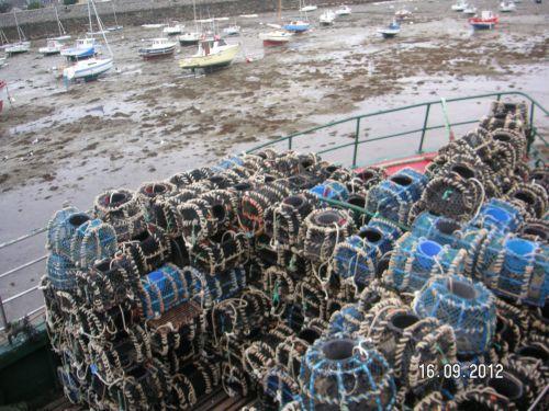 Casiers à crustacés port de Roscoff