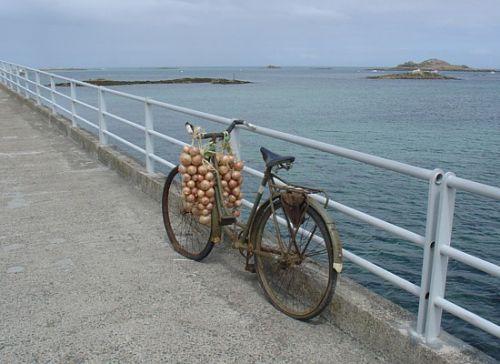 Le vélo des johnnies