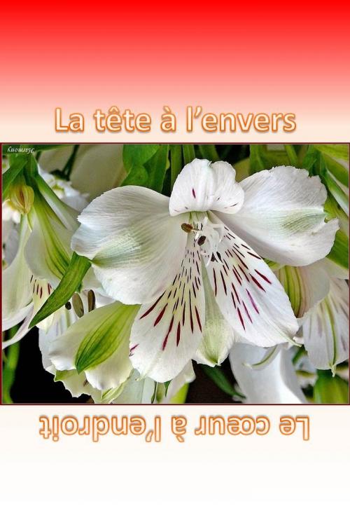 Les Univers - Fleur Une II jpeg.jpg
