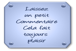 https://www.blog4ever-fichiers.com/2012/09/713297/617785commentaire.png