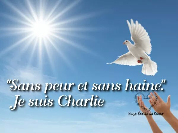 https://static.blog4ever.com/2012/09/713297/85-JeSuisCharlie.jpeg