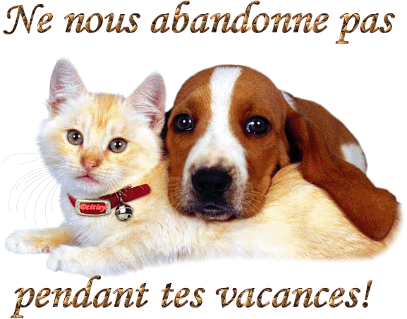 https://static.blog4ever.com/2012/09/713297/Cause-Animaux.png
