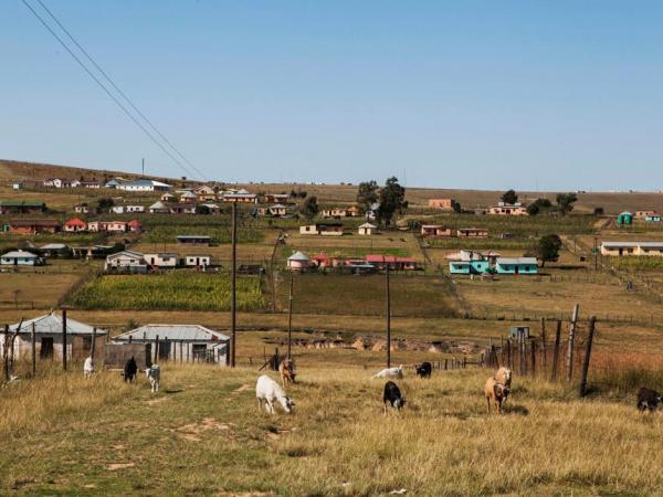 https://static.blog4ever.com/2012/09/713297/Qunu-Mandela.jpg