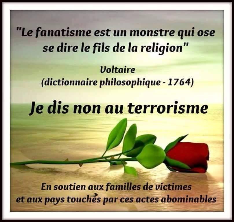 https://static.blog4ever.com/2012/09/713297/Txt-Voltaire.png