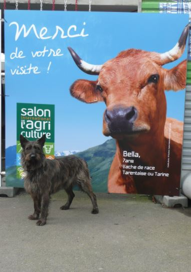 salon agri 3.JPG