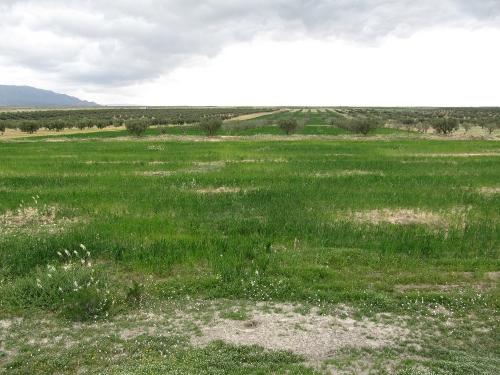 vue 6.jpg