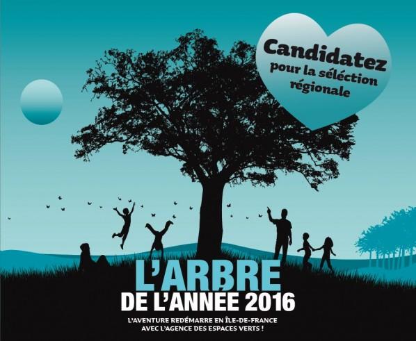 2016-arbre-de-l-annee.jpg