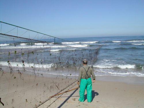 DSCN0695-Filet remontée plage MIRA