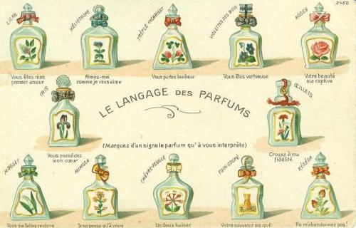carte langage des parfums.jpg
